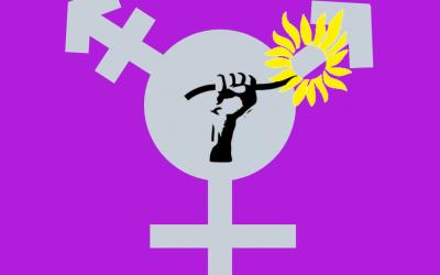 Modification du règlement intérieur : procédure en cas de harcèlement ou violences sexuelles